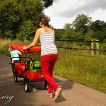 Erfahrungsbericht: FUXTEC Bollerwagen mit Sonnendach